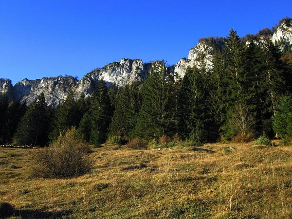 Foto: Andreas Koller / Klettersteig Tour / Maiklsteig und Schatterberg (1274m) / Letzter Blick zu den Felswänden des Niederkaiser / 10.01.2017 02:39:28