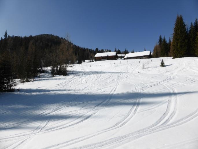 Foto: Manfred Karl / Skitour / Peitlernock von Innerkrems / Hier lassen sich die Reidn recht gut abkürzen / 16.01.2017 20:42:17
