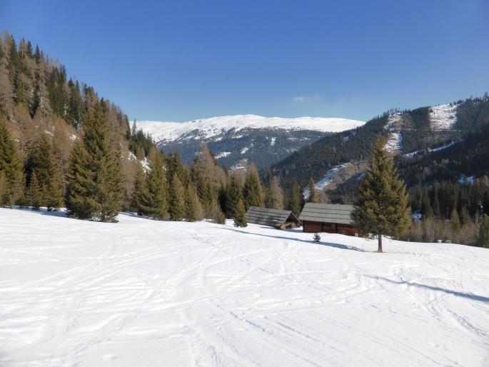 Foto: Manfred Karl / Skitour / Peitlernock von Innerkrems / Kurz vor dem Nockalmhof / 16.01.2017 20:41:49