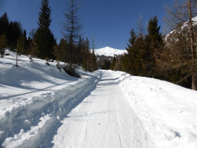 Foto: Manfred Karl / Skitour / Peitlernock von Innerkrems / Weg zur Bärengrubenalm / 16.01.2017 20:41:26