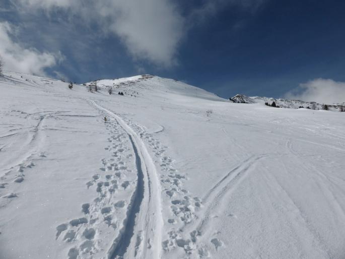 Foto: Manfred Karl / Skitour / Peitlernock von Innerkrems / Die nach rechts geneigten Hänge werden für die Abfahrt genützt / 16.01.2017 20:40:00