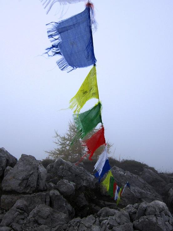 Foto: Andreas Koller / Klettersteigtour / Schützensteig und Jenner (1874m) / 09.03.2017 02:16:00