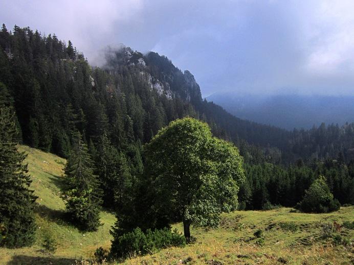 Klettersteig Chiemgau : Kurzurlaub im chiemgau mit schluchten trekking jochen schweizer