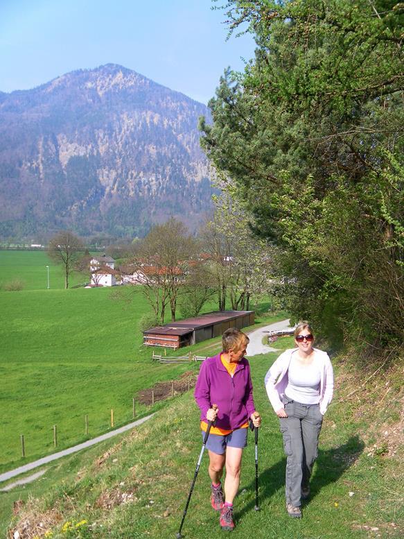 Foto: Wolfgang Lauschensky / Wandertour / Kranzhorn 1368m über Kranzhornsteig / Wiesenweg bei Oberscheiben / 13.04.2017 21:32:00
