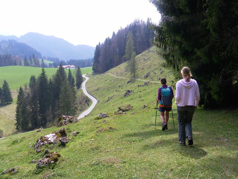 Foto: Wolfgang Lauschensky / Wandertour / Kranzhorn 1368m über Kranzhornsteig / Fußweg nach Erl / 13.04.2017 21:14:35