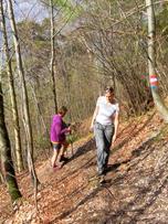 Foto: Wolfgang Lauschensky / Wandertour / Kranzhorn 1368m über Kranzhornsteig / gut markiert / 13.04.2017 21:31:34