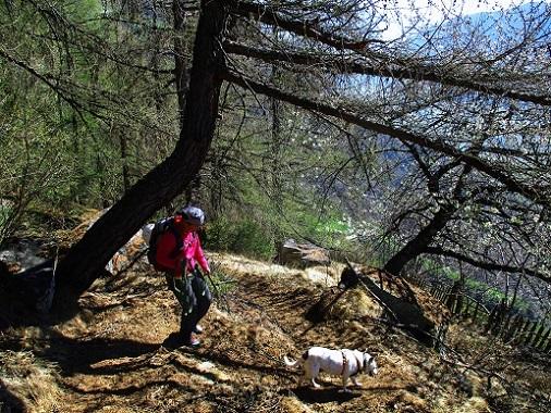 Klettersteig Naturns : Fotogalerie tourfotos fotos zur klettersteig tour
