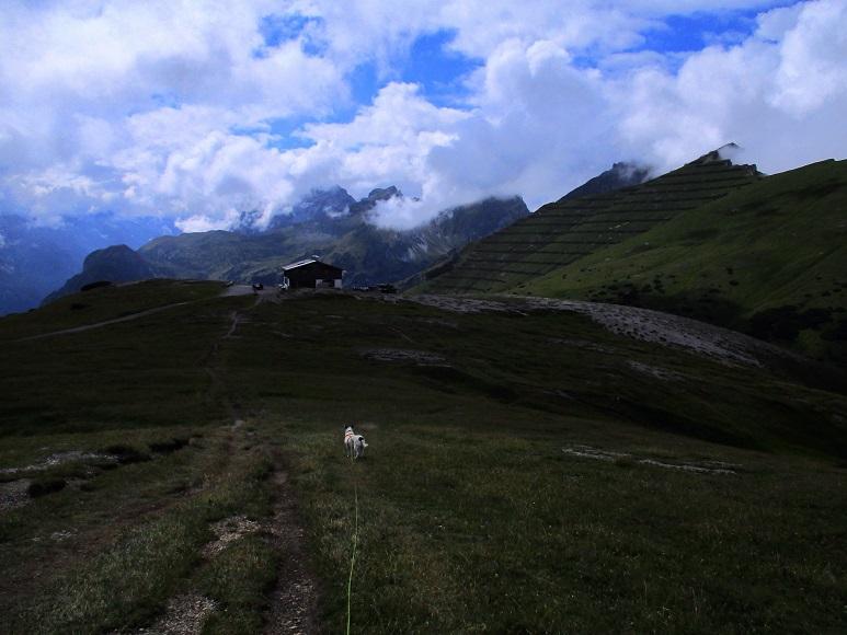 Foto: Andreas Koller / Wandertour / Blumenberg Blaser (2241m) / Blaserhütte / 17.09.2017 21:44:45