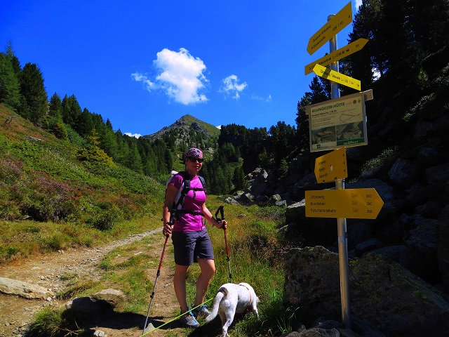 Foto: Andreas Koller / Wander Tour / Zirbenweg und Viggarspitze (2306m) / 11.10.2017 22:59:20