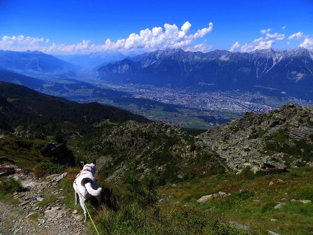 Foto: Andreas Koller / Wander Tour / Zirbenweg und Viggarspitze (2306m) / Abstieg von der Viggarspitze / 11.10.2017 22:56:33