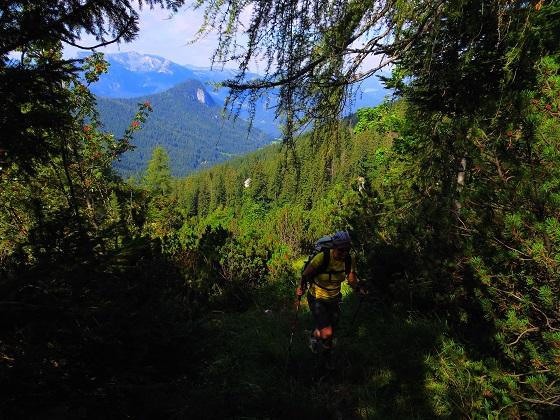 Foto: Andreas Koller / Klettersteigtour / TG Reiter Alpe 1: Klettersteig Mayrbergscharte (2055m) / 12.11.2017 00:27:48