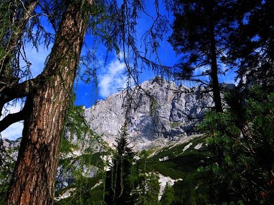 Foto: Andreas Koller / Klettersteigtour / TG Reiter Alpe 1: Klettersteig Mayrbergscharte (2055m) / 12.11.2017 00:27:41
