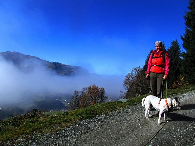 Foto: Andreas Koller / Wandertour / Großer Gebra - eine stille Tour in den Kitzbüheler Alpen (2057m) / 08.12.2017 17:27:57