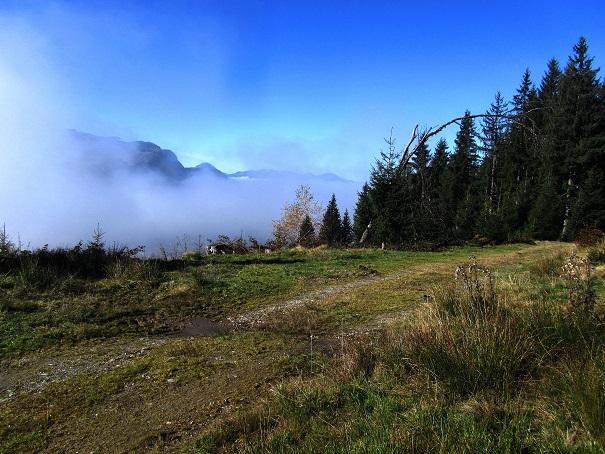 Foto: Andreas Koller / Wandertour / Großer Gebra - eine stille Tour in den Kitzbüheler Alpen (2057m) / 08.12.2017 17:27:46