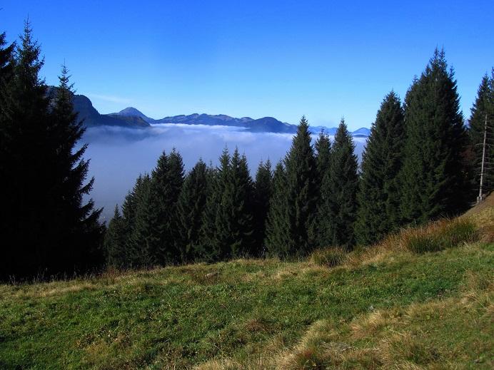 Foto: Andreas Koller / Wandertour / Großer Gebra - eine stille Tour in den Kitzbüheler Alpen (2057m) / 08.12.2017 17:27:41