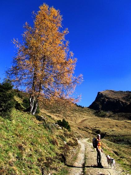 Foto: Andreas Koller / Wandertour / Großer Gebra - eine stille Tour in den Kitzbüheler Alpen (2057m) / 08.12.2017 17:26:56