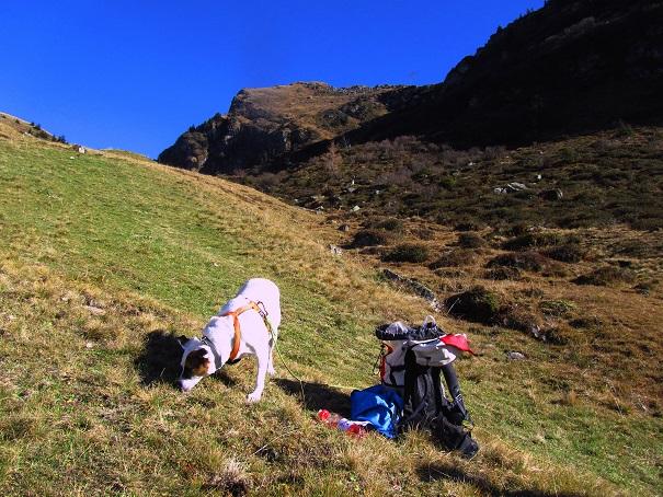 Foto: Andreas Koller / Wandertour / Großer Gebra - eine stille Tour in den Kitzbüheler Alpen (2057m) / 08.12.2017 17:26:49