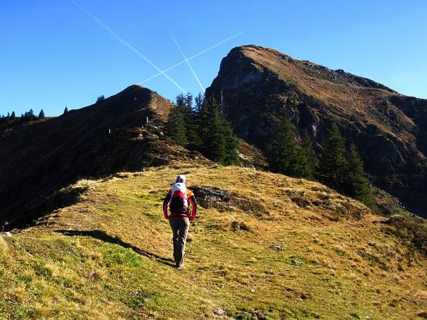 Foto: Andreas Koller / Wandertour / Großer Gebra - eine stille Tour in den Kitzbüheler Alpen (2057m) / 08.12.2017 17:26:15