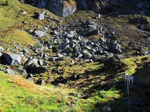 Foto: Andreas Koller / Wandertour / Großer Gebra - eine stille Tour in den Kitzbüheler Alpen (2057m) / 08.12.2017 17:26:01