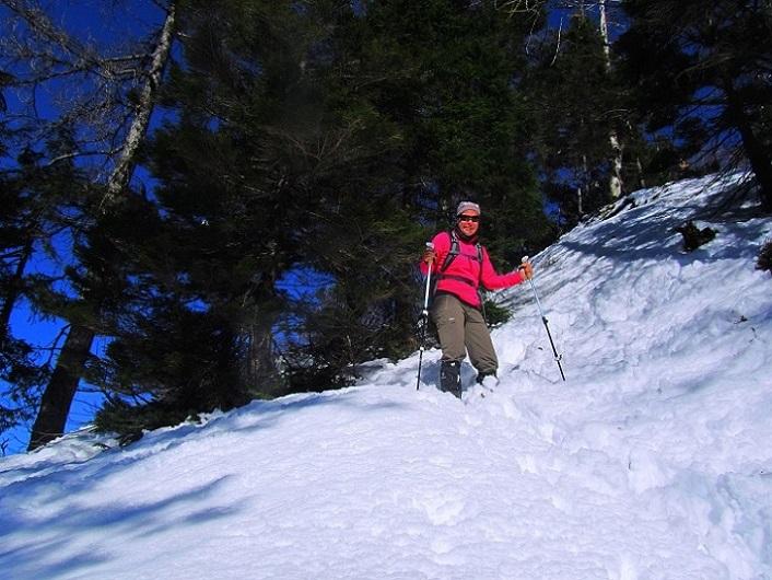 Foto: Andreas Koller / Wander Tour / Option Gspranggupf (1368m) / Steiler Abstieg vom Gspranggupf / 15.04.2018 15:00:03