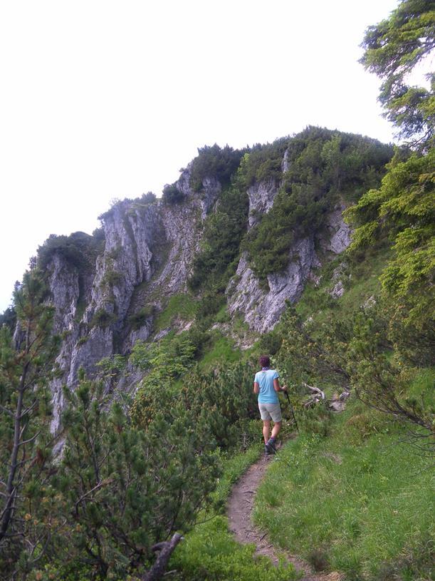 Foto: Wolfgang Lauschensky / Wandertour / Spitzstein Überschreitung via Nordwandsteig von Erl - Bike&Hike / vor dem Brandlberg / 13.06.2018 14:10:50