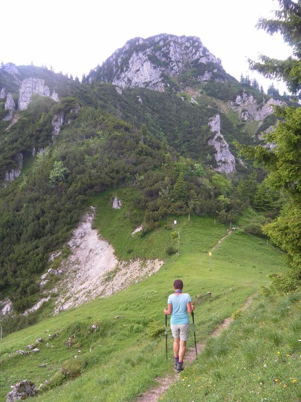 Foto: Wolfgang Lauschensky / Wandertour / Spitzstein Überschreitung via Nordwandsteig von Erl - Bike&Hike / links der Innerwaldanstieg zum Spitzstein / 13.06.2018 14:10:43