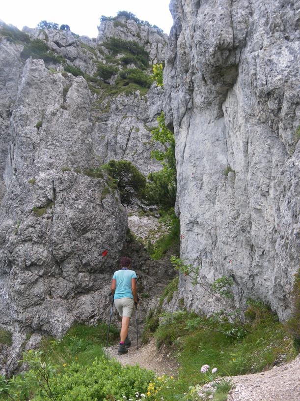 Foto: Wolfgang Lauschensky / Wandertour / Spitzstein Überschreitung via Nordwandsteig von Erl - Bike&Hike / Zustieg zum Nordwandsteig / 13.06.2018 14:10:35
