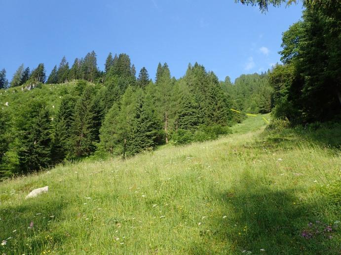 Foto: Manfred Karl / Wandertour / Kleiner Bärenstaffl, 2013 m / Durch diese Rinne wird aufgestiegen / 02.07.2018 19:28:03