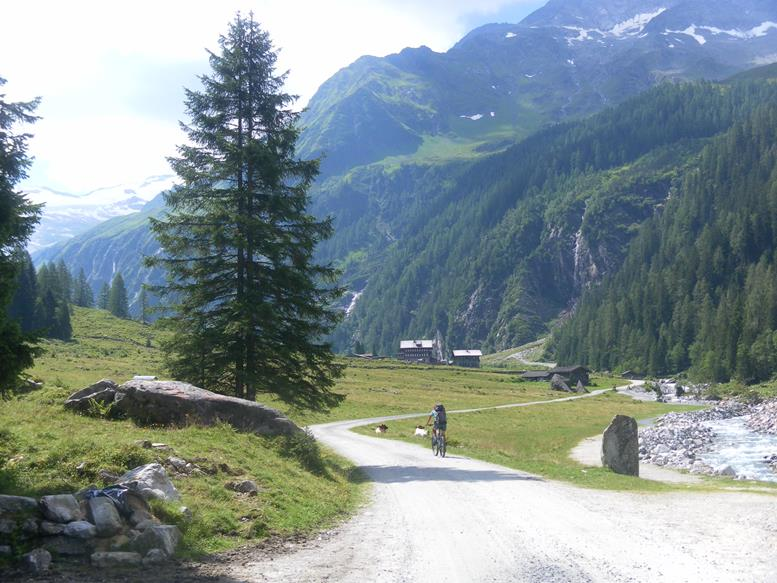 Foto: Wolfgang Lauschensky / Wander Tour / Roßlahnerkopf 2861m von der Thyringer Hütte / Alpenrose / 04.08.2018 13:56:17
