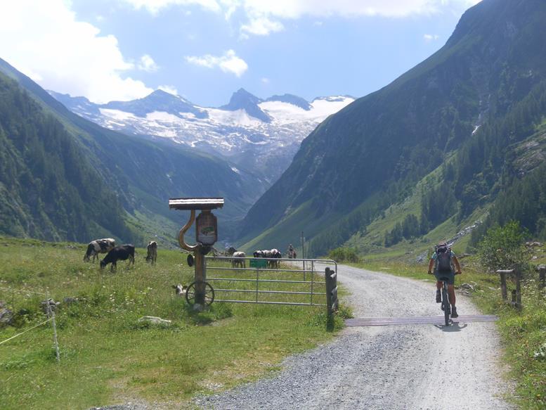 Foto: Wolfgang Lauschensky / Wander Tour / Roßlahnerkopf 2861m von der Thyringer Hütte / Kratzenberg und Schwarzkopf von der Moaralm / 04.08.2018 13:56:09