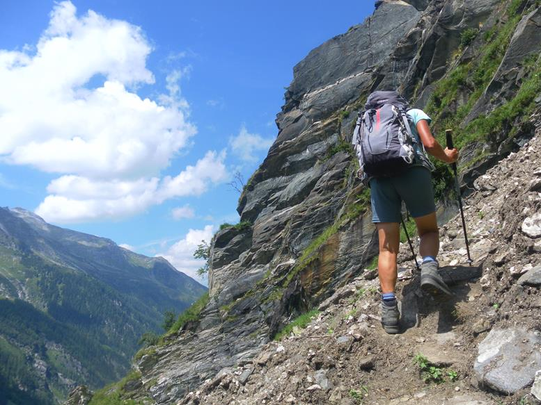 Foto: Wolfgang Lauschensky / Wander Tour / Roßlahnerkopf 2861m von der Thyringer Hütte / Steilanstieg / 04.08.2018 13:55:51
