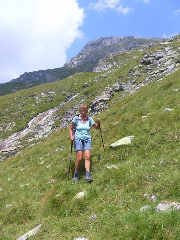 Foto: Wolfgang Lauschensky / Wander Tour / Roßlahnerkopf 2861m von der Thyringer Hütte / Schafalmwiesen, darüber der Roßlahnerkopf / 04.08.2018 13:54:52