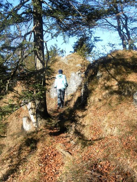 Foto: Wolfgang Lauschensky / Wandertour / Pasterkopf oder Pastaukopf über Kranzhorn / am Gipfelgrat / 22.11.2018 18:22:19