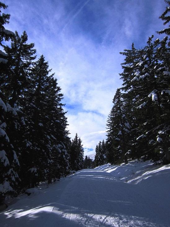Foto: Andreas Koller / Skitour / Vom Salzstieglhaus auf den Speikkogel (1993m) / 10.12.2018 01:50:32