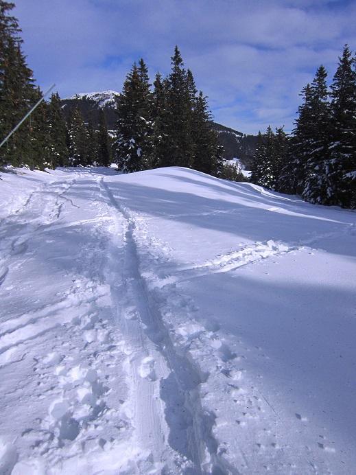 Foto: Andreas Koller / Skitour / Vom Salzstieglhaus auf den Speikkogel (1993m) / 10.12.2018 01:50:19