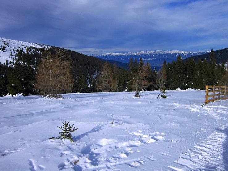 Foto: Andreas Koller / Skitour / Vom Salzstieglhaus auf den Speikkogel (1993m) / 10.12.2018 01:49:44