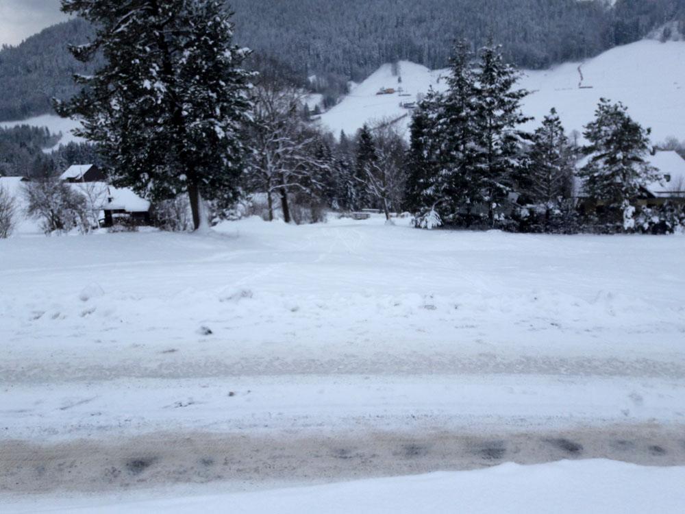 Foto: Rupert Gredler / Skitour / Spielberg, eine rustkale Variante / letzte Wiese vorm Parkplatz / 18.12.2018 17:55:14