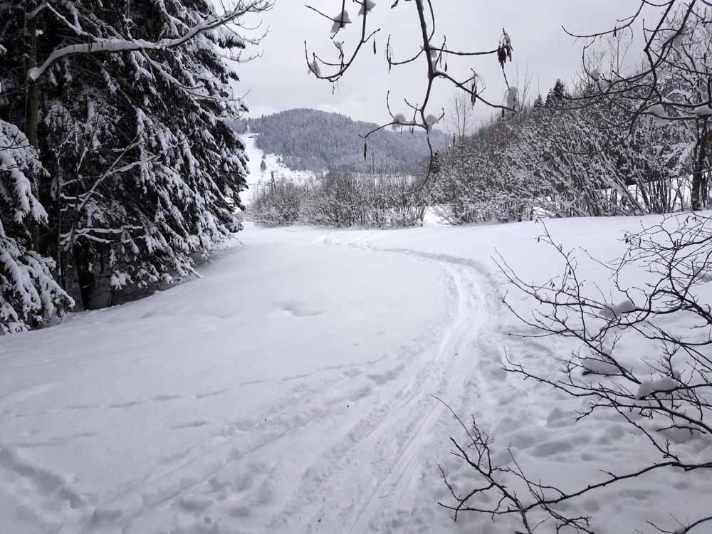 Foto: Rupert Gredler / Skitour / Spielberg, eine rustkale Variante / nach dem Stacheldraht / 18.12.2018 17:58:46