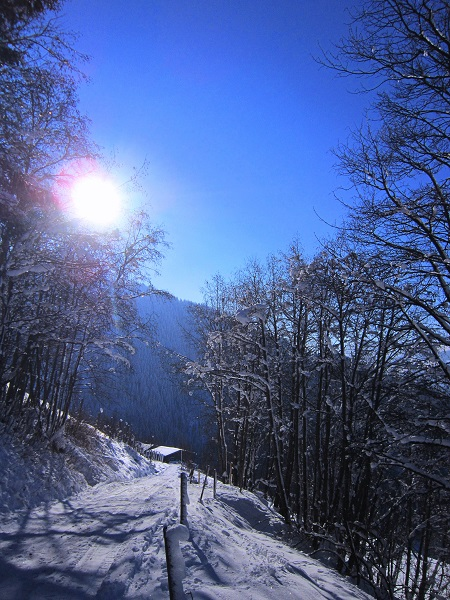 Foto: Andreas Koller / Skitour / Auracher Wildparktour Gaisberg (1798m) / 24.12.2018 15:31:50