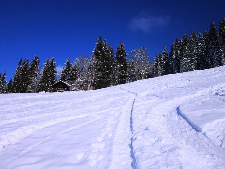 Foto: Andreas Koller / Skitour / Auracher Wildparktour Gaisberg (1798m) / 24.12.2018 15:31:42