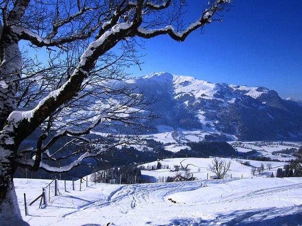 Foto: Andreas Koller / Skitour / Auracher Wildparktour Gaisberg (1798m) / 24.12.2018 15:30:50