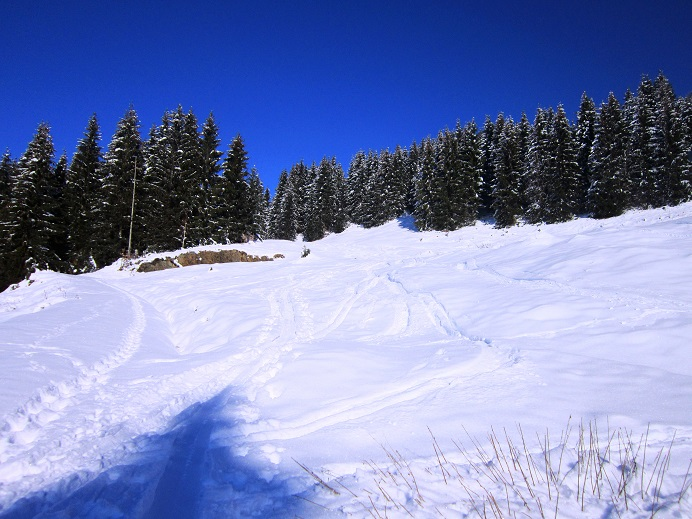 Foto: Andreas Koller / Skitour / Auracher Wildparktour Gaisberg (1798m) / 24.12.2018 15:30:42