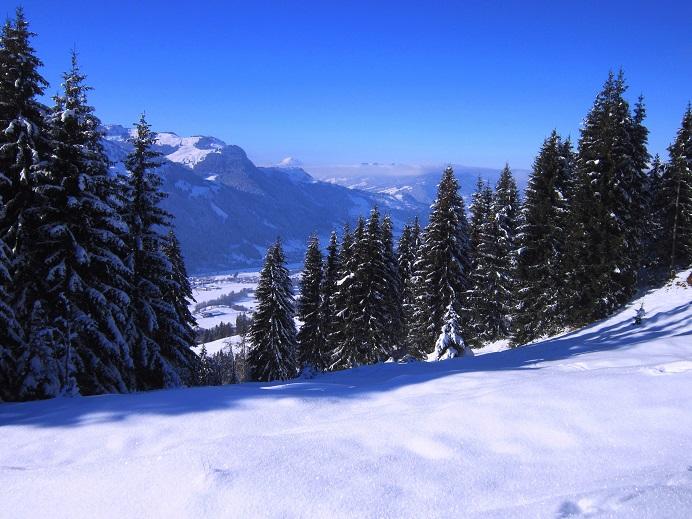 Foto: Andreas Koller / Skitour / Auracher Wildparktour Gaisberg (1798m) / 24.12.2018 15:30:16