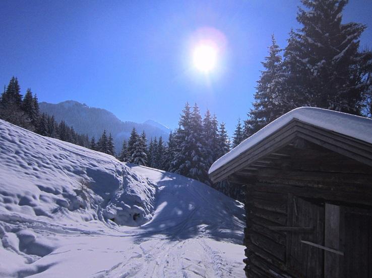 Foto: Andreas Koller / Skitour / Auracher Wildparktour Gaisberg (1798m) / 24.12.2018 15:30:08