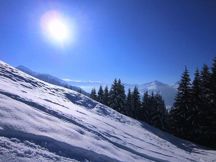 Foto: Andreas Koller / Skitour / Auracher Wildparktour Gaisberg (1798m) / 24.12.2018 15:30:00
