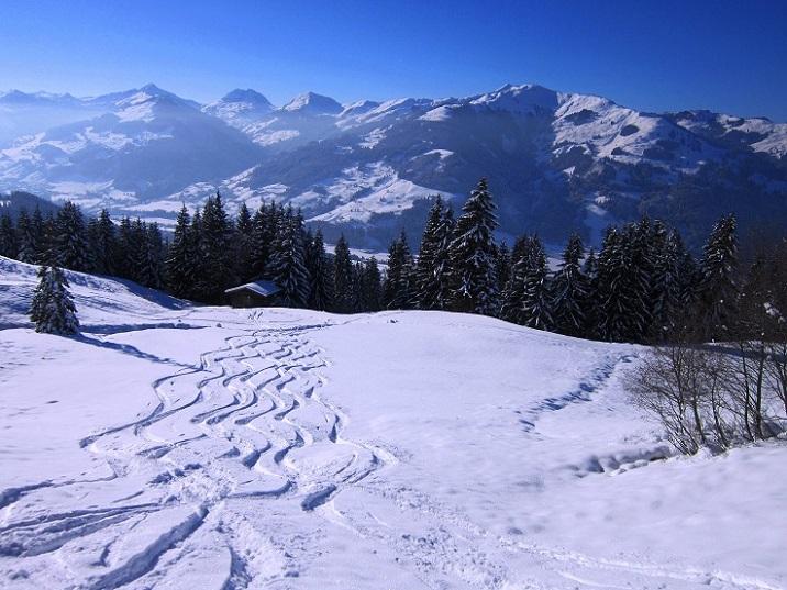 Foto: Andreas Koller / Skitour / Auracher Wildparktour Gaisberg (1798m) / 24.12.2018 15:29:44
