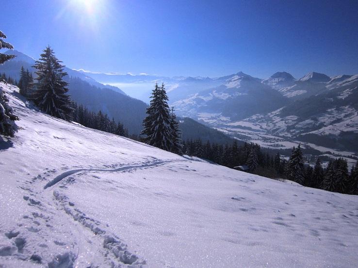 Foto: Andreas Koller / Skitour / Auracher Wildparktour Gaisberg (1798m) / 24.12.2018 15:29:25