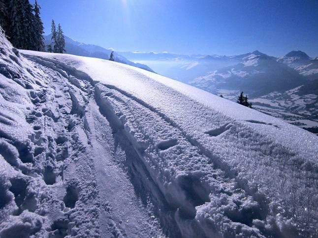 Foto: Andreas Koller / Skitour / Auracher Wildparktour Gaisberg (1798m) / 24.12.2018 15:29:01
