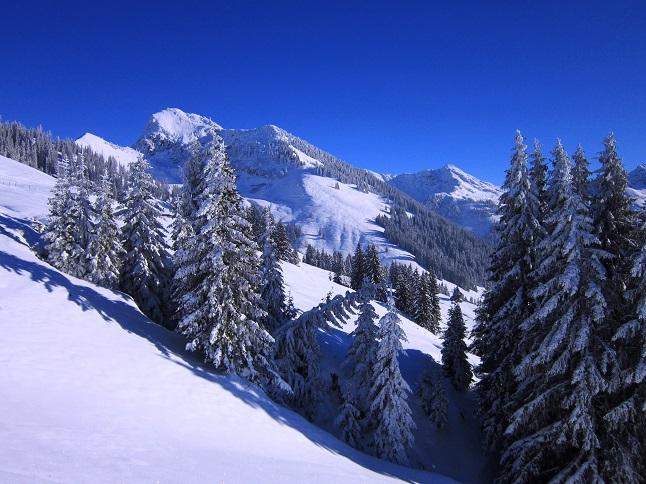 Foto: Andreas Koller / Skitour / Auracher Wildparktour Gaisberg (1798m) / 24.12.2018 15:27:17