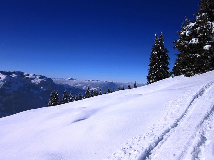 Foto: Andreas Koller / Skitour / Auracher Wildparktour Gaisberg (1798m) / 24.12.2018 15:26:47